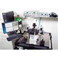 肌肉细胞力学测试系统