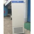450L人工气候箱销售