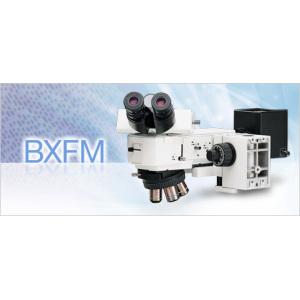 OLYMPUS小型系统显微镜BXFM
