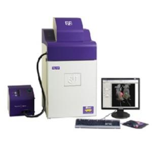 【UVP】小动物活体成像/凝胶成像系统iBox Scientia 500/600