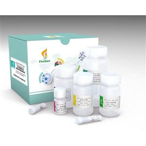 FG0414  FFPE RNA提取试剂盒