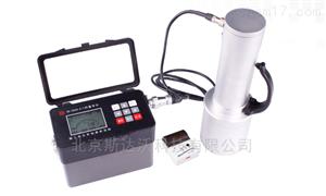 HD-2005  X-γ剂量率仪
